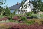 kleinegarten (12)