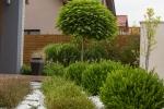 kleinegarten (18)