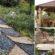 Dārzs. Padomi un idejas 220